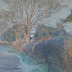 Bright-frosty-morning-on-The-Quarry-Road-Misson