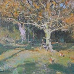 Maple-in-Autumn-Oil-10-x-12