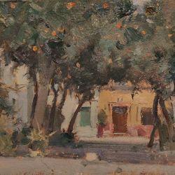 Shady-corner-Seville